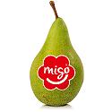 Sponsor - Migo®